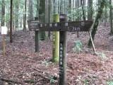 霧島東神社11